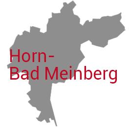 Horn-BadMeinberg